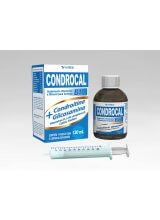 Condrocal B12 120 ML